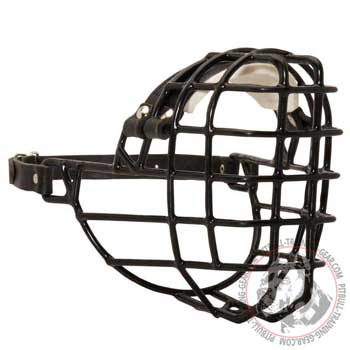 Wire basket Pitbull muzzle padded on nose