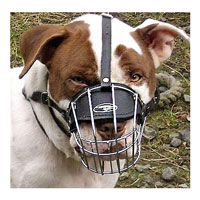 Wire Basket Dog Muzzle for American Pit Bull Terrier customer feedback