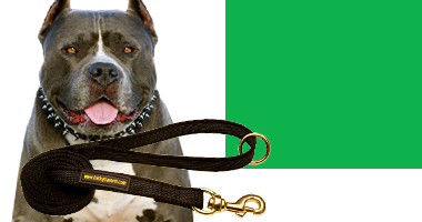 Dog Leashes for Large Dogs like Pitbull