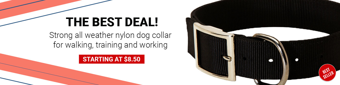 Durable Wide Nylon Pitbull Collar for Daily Walking and Traning