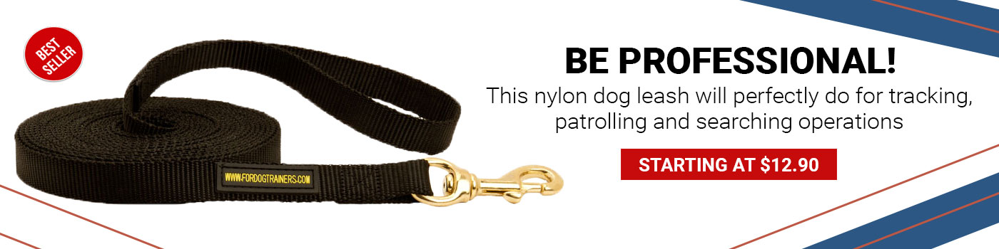 Extra Long Nylon Pitbull Leash for Tracking at Any Weather