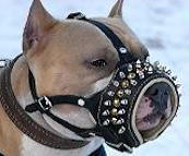 Anti-Barking Padded Leather Pitbull Muzzle with Studs and Spikes